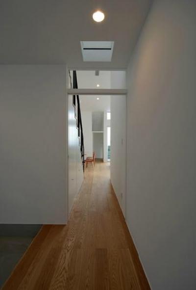 玄関ホールよりリビングを見る (『YM-house』光と風を採り込む方流れ屋根の家)