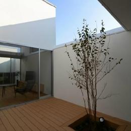 開放的なプライベートテラス (『YM-house』光と風を採り込む方流れ屋根の家)