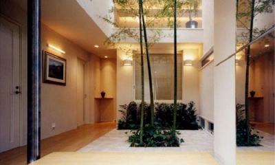 『世田谷S邸』鮮やかな竹のアプローチを持つ家 (鮮やかな竹が迎える玄関)