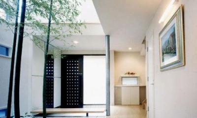 『世田谷S邸』鮮やかな竹のアプローチを持つ家 (鮮やかな竹の中庭)