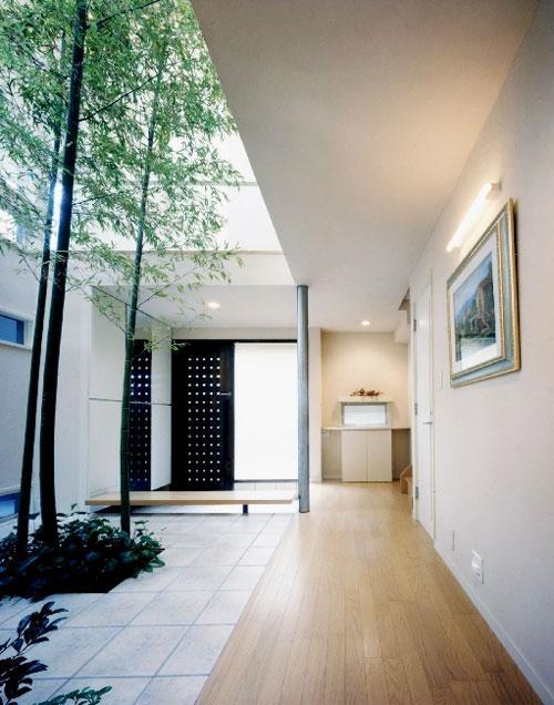 『世田谷S邸』鮮やかな竹のアプローチを持つ家の写真 鮮やかな竹の中庭