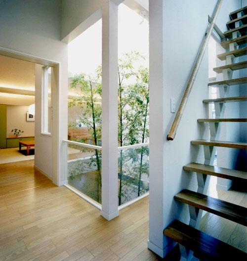 『世田谷S邸』鮮やかな竹のアプローチを持つ家の写真 中庭より光の入る2階ホール