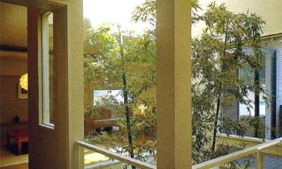 夕日の差し込む中庭|『世田谷S邸』鮮やかな竹のアプローチを持つ家