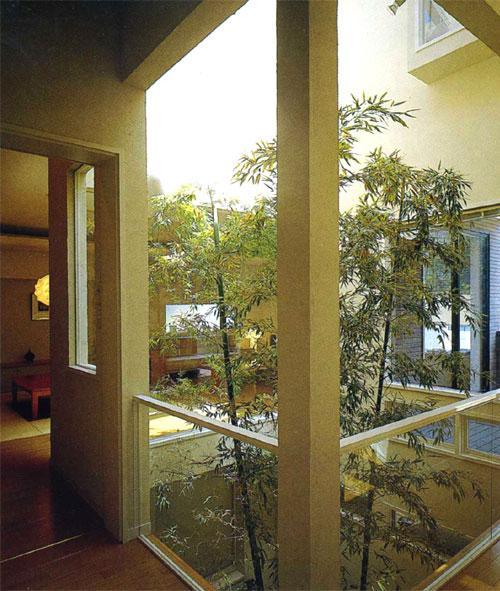 『世田谷S邸』鮮やかな竹のアプローチを持つ家の写真 夕日の差し込む中庭
