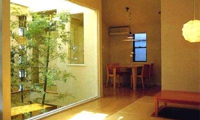 中庭より夕日の差し込むリビングダイニング|『世田谷S邸』鮮やかな竹のアプローチを持つ家