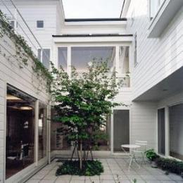 共有スペースの中庭