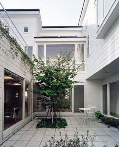 共有スペースの中庭 (『大田区K邸』中庭でつながる二世帯コートハウス)