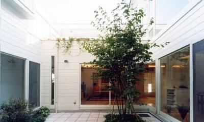 『大田区K邸』中庭でつながる二世帯コートハウス (家族をつなぐ開放的な中庭)
