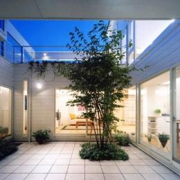 『大田区K邸』中庭でつながる二世帯コートハウス (家族をつなぐ中庭-夜景)