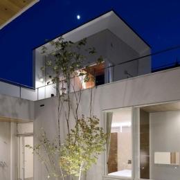 『凹[ou]』内と外の関係性を持つ住宅 (中庭夜景-ライトアップ)