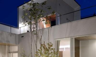 中庭夜景-ライトアップ|『凹[ou]』内と外の関係性を持つ住宅