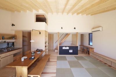 柳崎の住宅 (リビングダイニング)