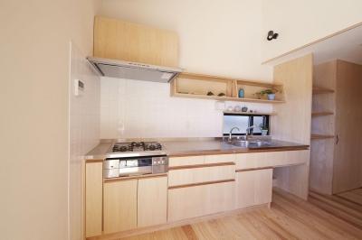 柳崎の住宅 (キッチン)