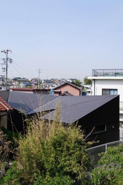 ねじれつつ連続する屋根 (『稜線の家』様々な風景と居場所を生み出す平屋住宅)