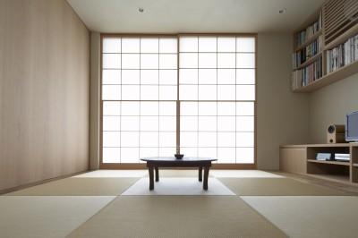 茶の間-寛ぎの畳リビング (二子新地の家 木造アパートの一階を庭を楽しめる住居兼事務所に|改修)