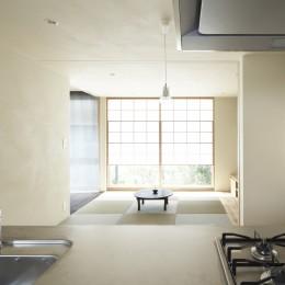 二子新地の家 木造アパートの一階を庭を楽しめる住居兼事務所に|改修-キッチンからの眺め