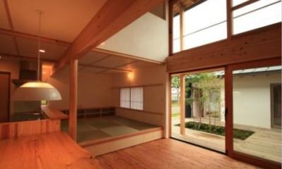 『多賀城のコートハウス』中庭を囲む2世帯住宅 (リビングダイニングと中庭)