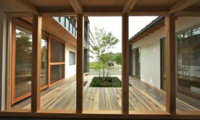 『多賀城のコートハウス』中庭を囲む2世帯住宅 (開放的な中庭)