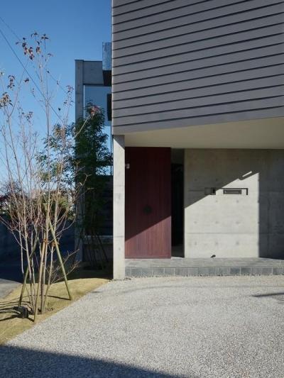 落ち着いた色味の玄関ドア (『名古屋・瑞穂区の家』不思議な奥行感のある住宅)