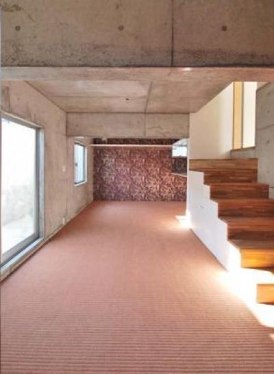 甲賀の家 (コンクリート打放しの穴蔵空間)