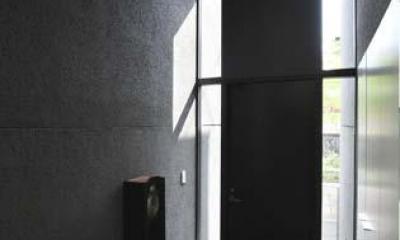 高野台CCH/プライベートコート(中庭)のある家 (光が差し込む玄関)