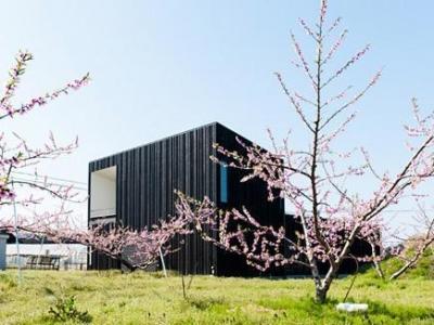 o house (外観( 撮影:© 村井 勇))