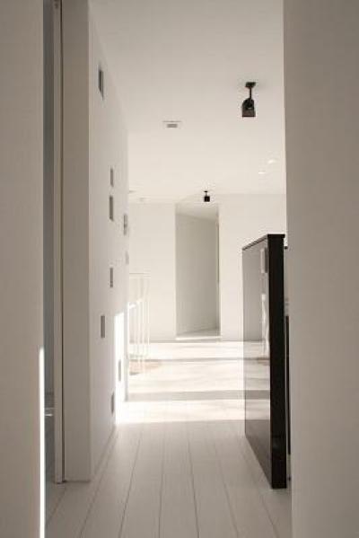 開放的な空間 (三角敷地の白い家)