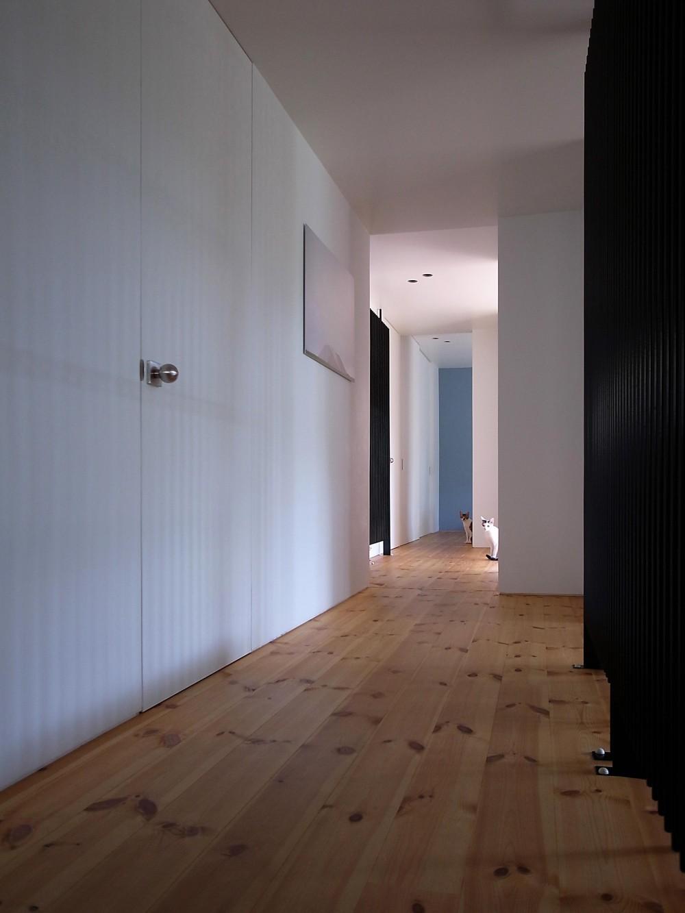 m&c house (廊下2(撮影:© 東海林 健))