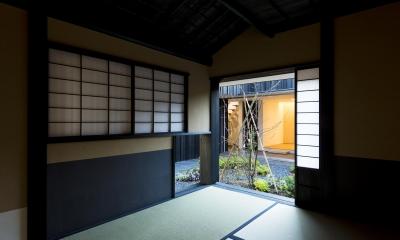 o house (茶室から中庭を見る(撮影:© 村井 勇))