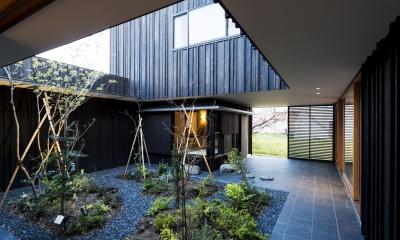o house (中庭(撮影:© 村井 勇))