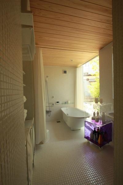 自分で作るベニヤの家 (バスルーム)