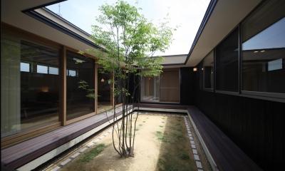 中庭|平屋のコートハウス