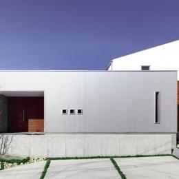 『公園前の家』明るくて風通しの良い住宅 (ガルバリウム鋼板と無垢の木の外観)