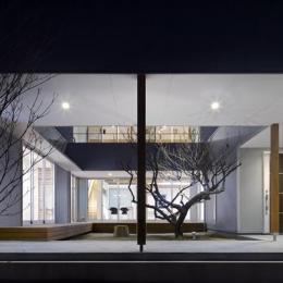 『公園前の家』明るくて風通しの良い住宅 (幻想的な中庭)