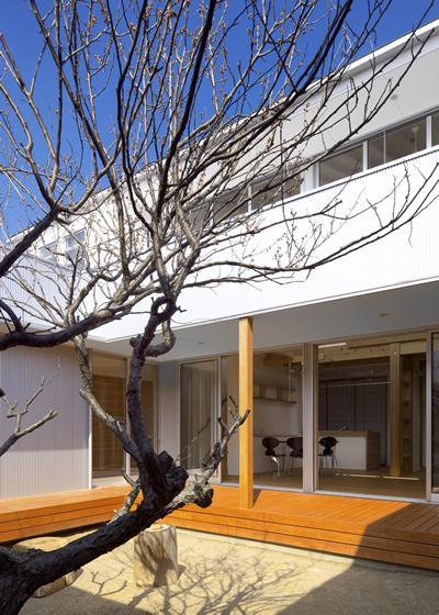 『公園前の家』明るくて風通しの良い住宅の部屋 中庭・デッキ