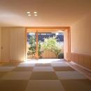 光を取り込む畳リビング