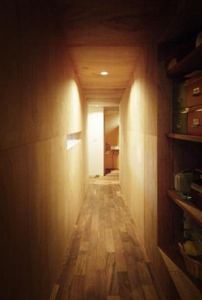 廊下-ラワン合板のトンネル (茜部のトンネルハウス)