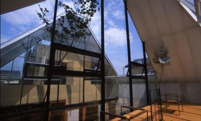 『ガラスのピラミッド』ガラスの合掌造り (2階展示室より中庭側を見る)
