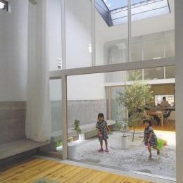 『浮かんだパティオのある家』空中の庭園 (オリーブの植えられた2階パティオ-1)