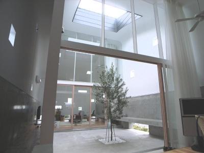 オリーブの植えられた2階パティオ-2 (『浮かんだパティオのある家』空中の庭園)