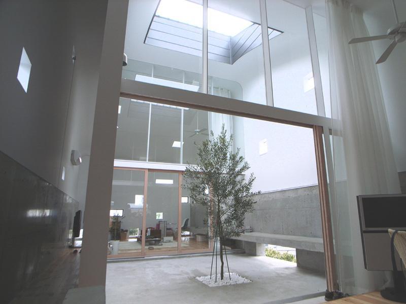 『浮かんだパティオのある家』空中の庭園の写真 オリーブの植えられた2階パティオ-2