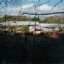 『武蔵野の家』桜の大木の別荘の写真 中央で約135°折れた別荘-外観