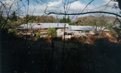 中央で約135°折れた別荘-外観|『武蔵野の家』桜の大木の別荘
