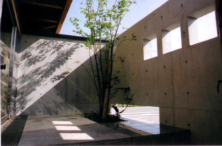 建築家:平川 徹「『稲美の家』シンボルツリーのある温かな住まい」
