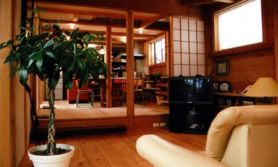 『稲美の家』シンボルツリーのある温かな住まい (居間・食堂-レベル差のあるワンルーム空間)