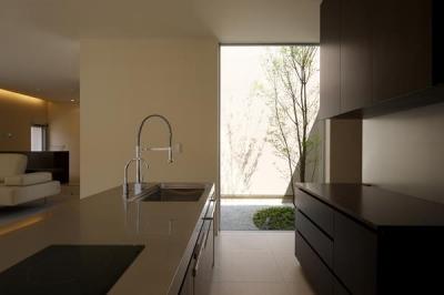 キッチン・ガラス張りのコート (名古屋市Y邸・高級感と重層感を併せもつコートハウス住宅)
