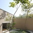 名古屋市Y邸・高級感と重層感を併せもつコートハウス住宅の写真 緑を感じる植栽のコート