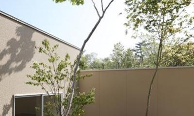名古屋市Y邸・高級感と重層感を併せもつコートハウス住宅 (緑を感じる植栽のコート)
