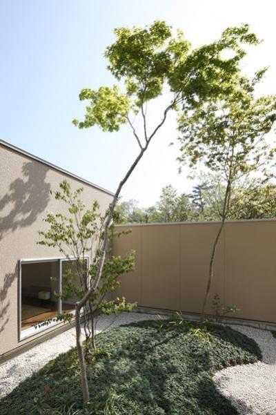 緑を感じる植栽のコート (名古屋市Y邸・高級感と重層感を併せもつコートハウス住宅)