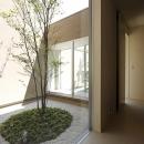 名古屋市Y邸・高級感と重層感を併せもつコートハウス住宅の写真 ガラス張りのコート